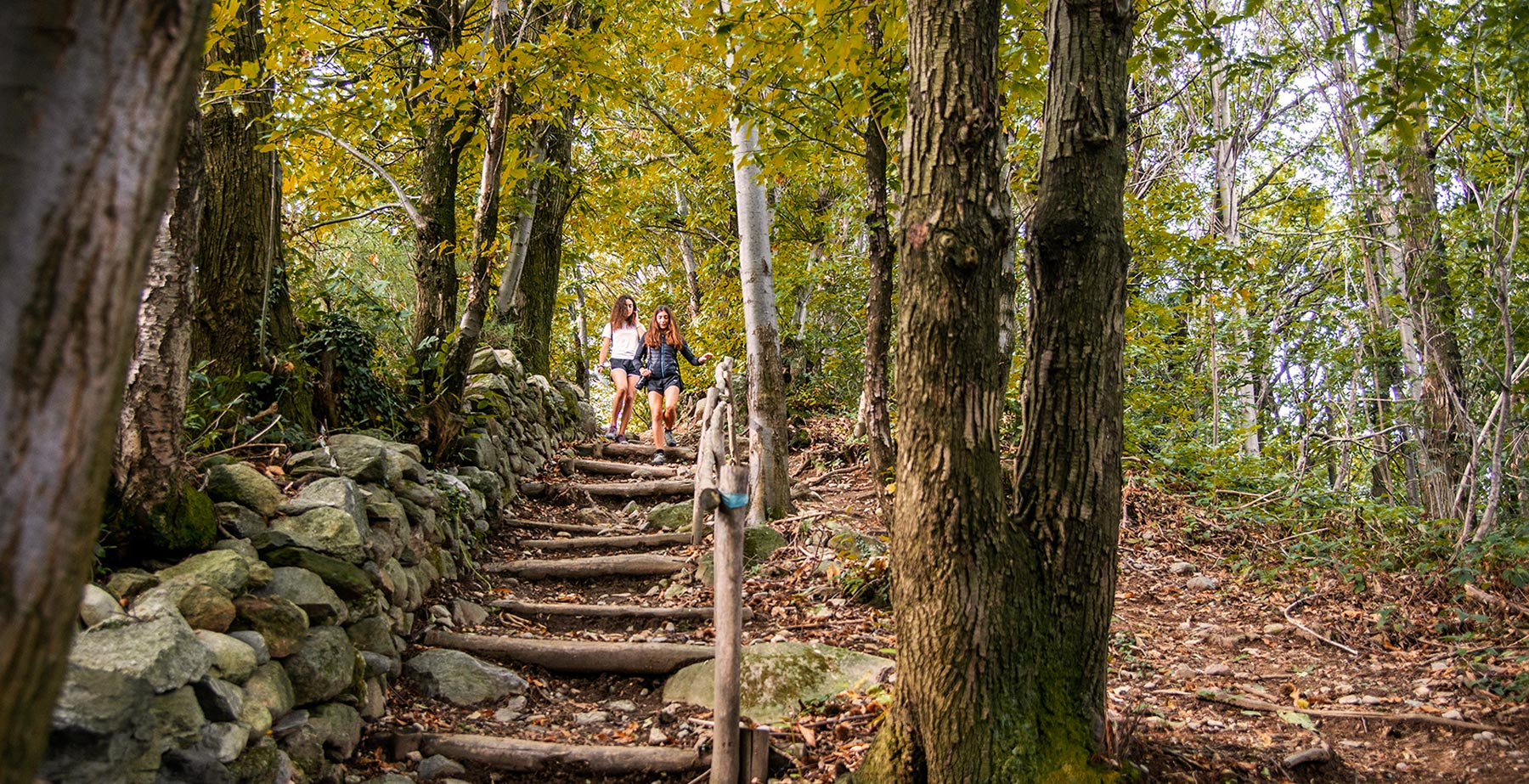 Vivi l'autunno </br>lungo la Via Giovannea
